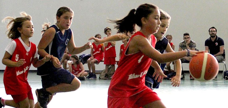 gazzelle milano basket stars
